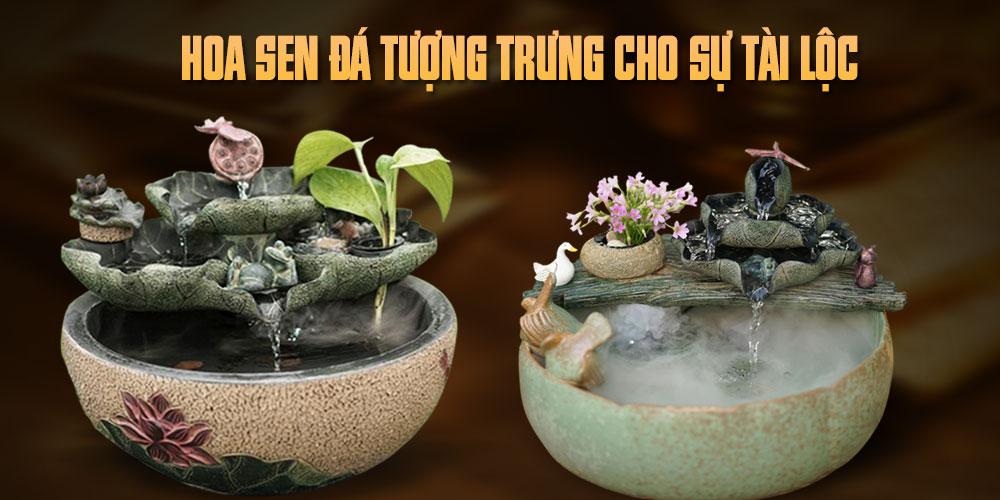 Tiểu cảnh Hoa sen đá tượng trưng cho sự tài lộc