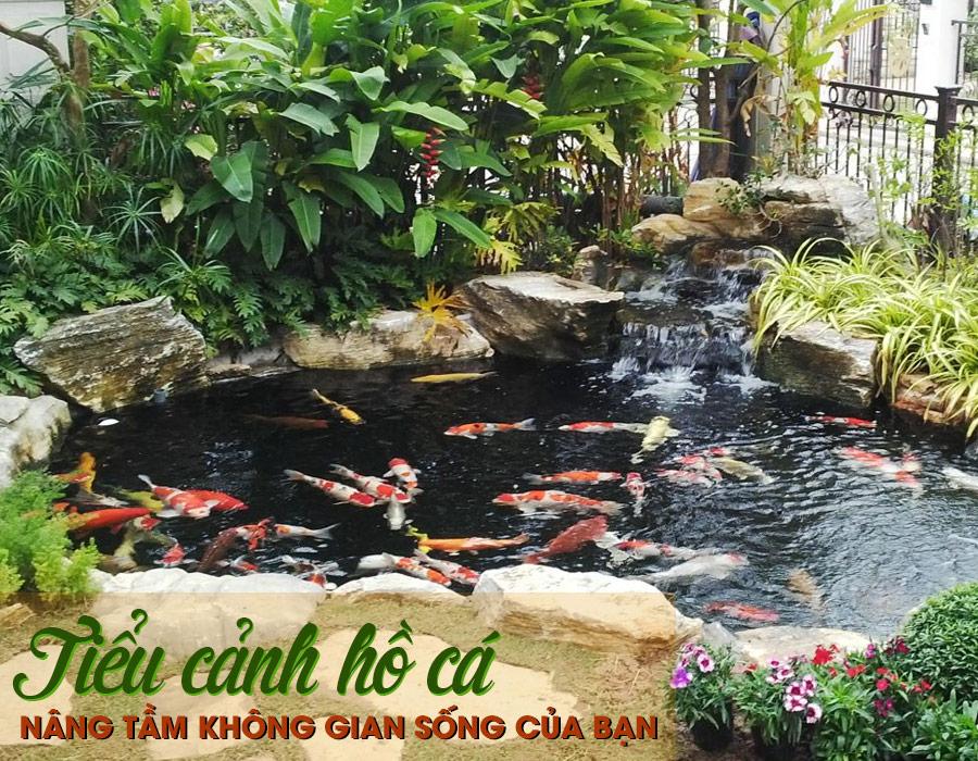 mô hình tiểu cảnh hồ cá trong không gian sân vườn đẹp