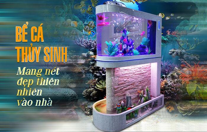 Bể cá thủy sinh tại nonbo.net.vn