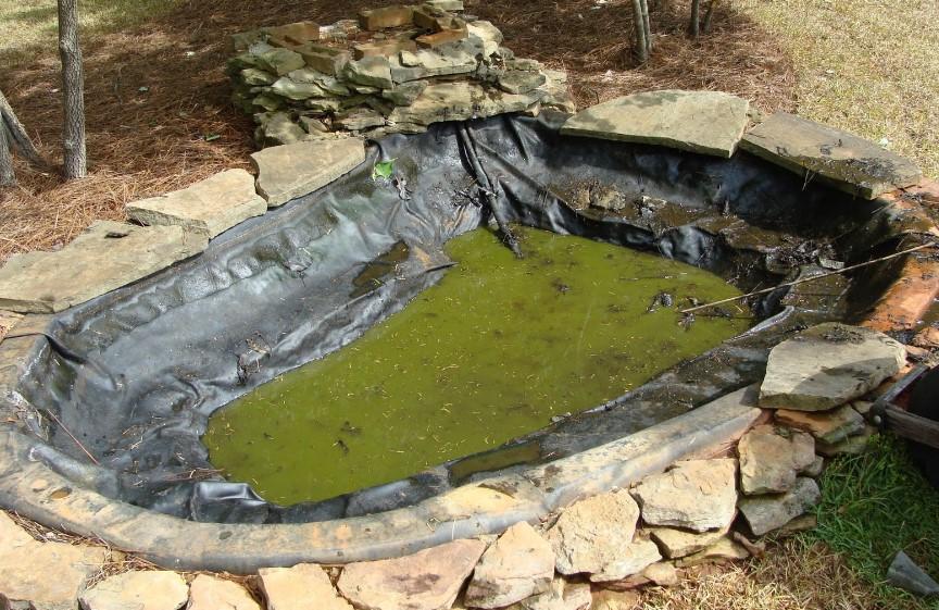 Đào hồ và thêm lớp lót cho hồ cá koi ngoài trời
