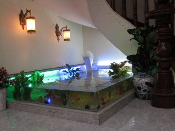 Hồ cá koi mini dành cho nhà nhỏ hẹp