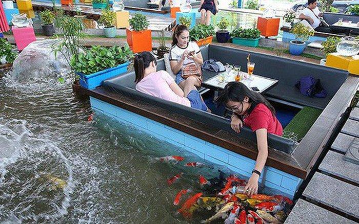 hồ cá koi mini sân vườn 05