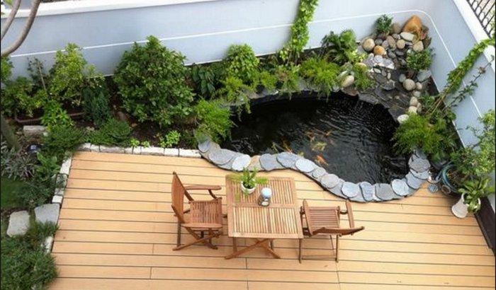 hồ cá koi sân thượng 2