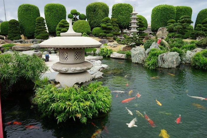 hồ cá koi sân vườn 4