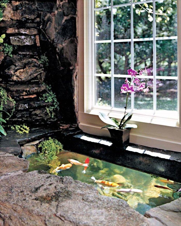 hồ cá koi trong nhà 1