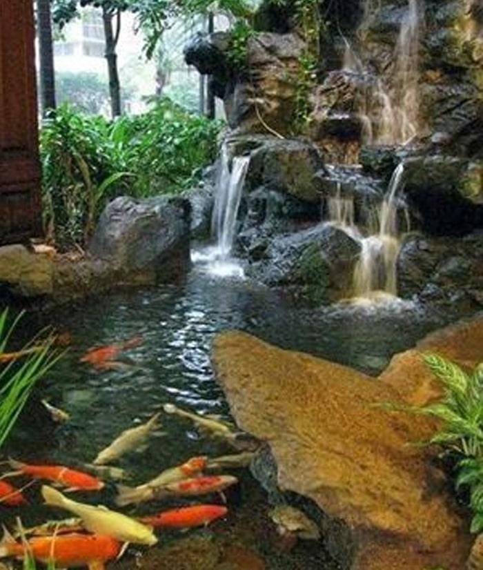 Việc đan xen trồng cây tự nhiên vào hồ sẽ là môi trường tốt