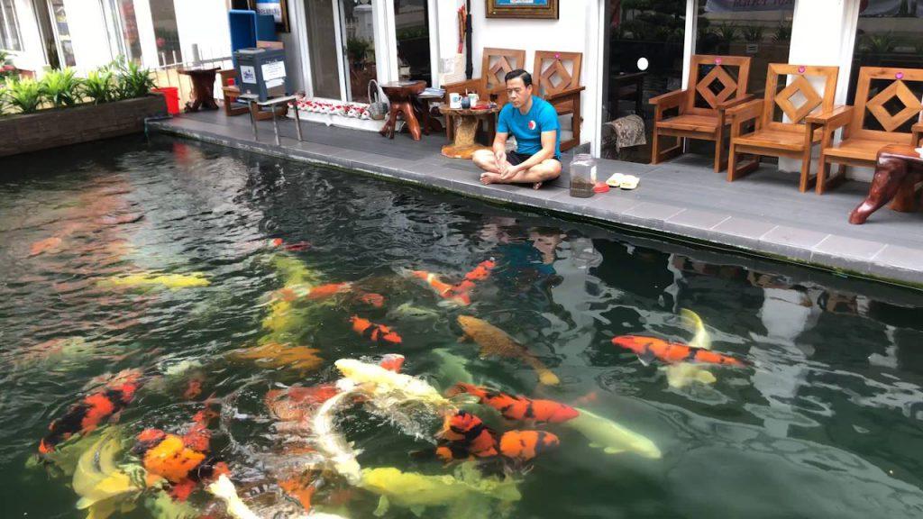 Mê mẩn với thiết kế hồ cá Koi tại Trung Quốc