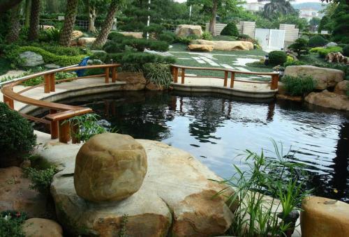 hồ cá koi sân vườn cso nhiều đá lớn