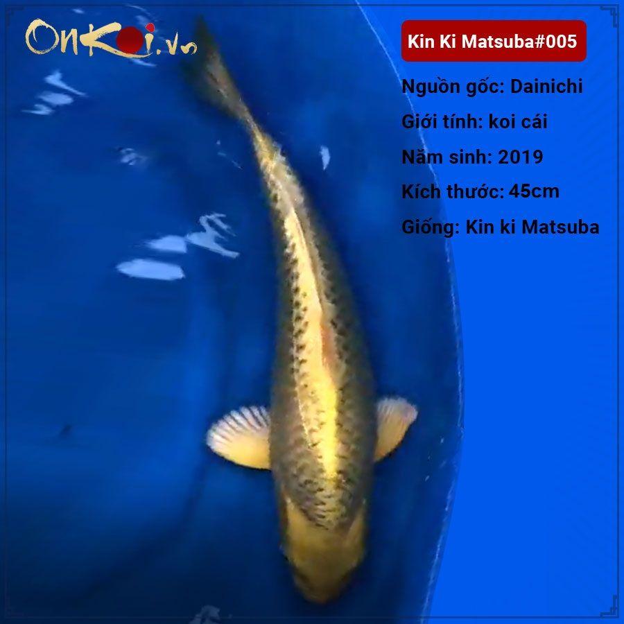 Phân loại Koi Matsuba